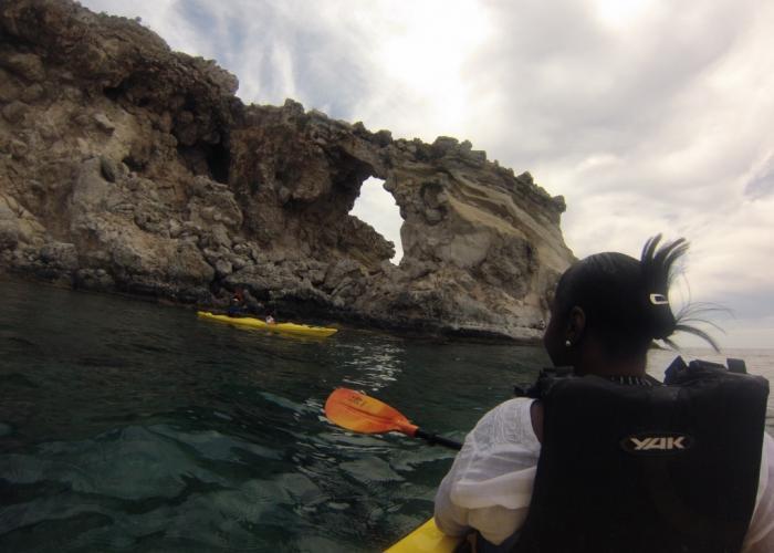 Sea kayaking day tours